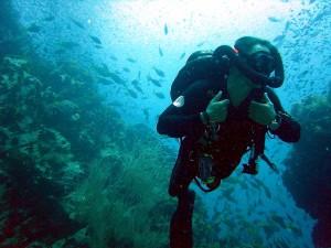 diving imperia